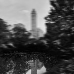 Reflection-Central-Park-2015-©-Paolo-Goltara